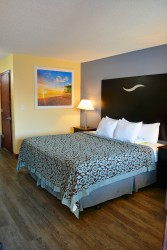 Accessible, 1 King Bed with Roll-in Shower, Non Smoking